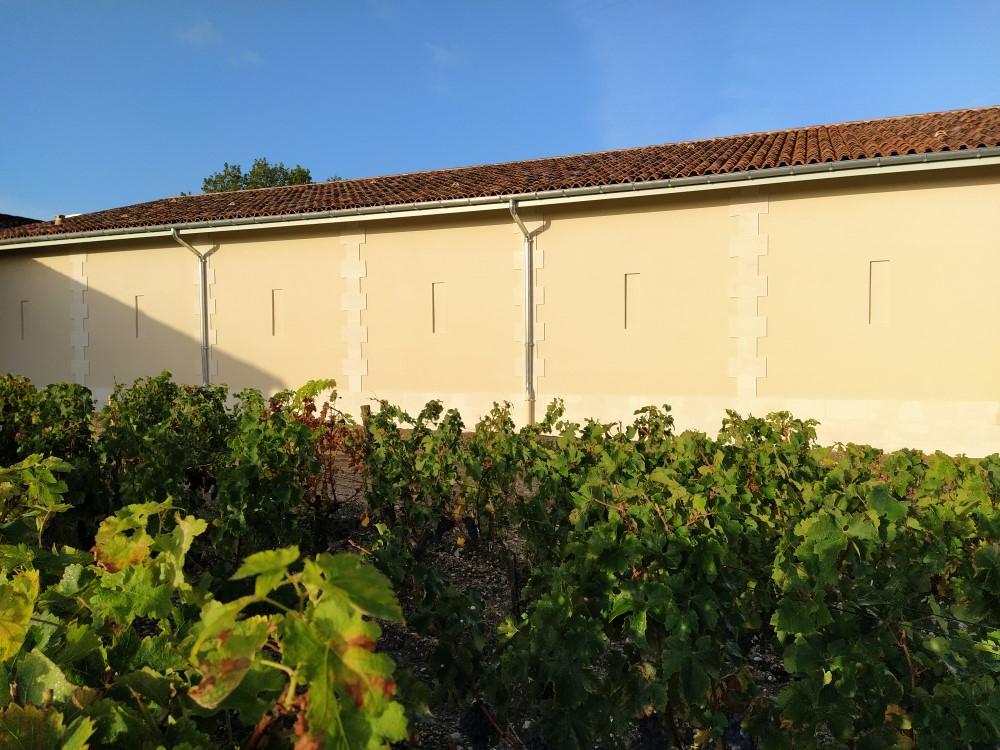 LA BOITE A CHAUX Restauration Patrimoine Bordeaux Img 18 1