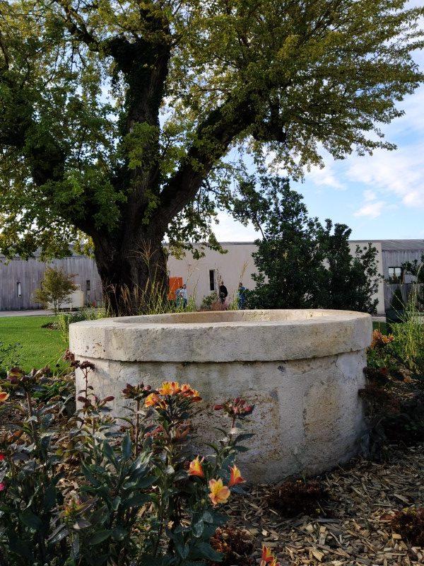 LA BOITE A CHAUX Restauration Patrimoine Bordeaux Img 32